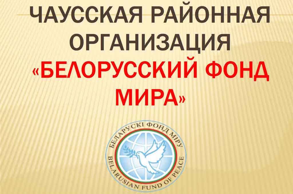 Презентация Чаусской районной организации.